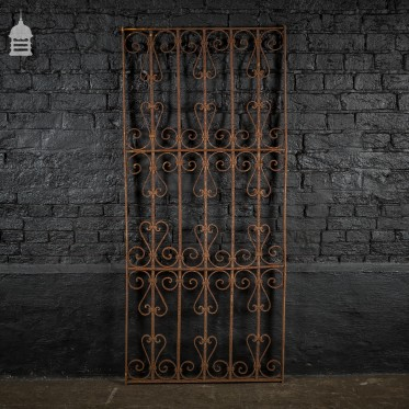 Tall 19th C Wrought Iron Railing with Scroll Design
