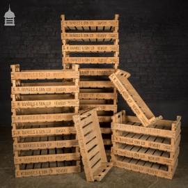 Batch of 52 Vintage Wooden Chitting Crates Branded G. W. Daniels & Son Ltd
