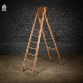 Edwardian Pitch Pine Folding A-Steps Ladder