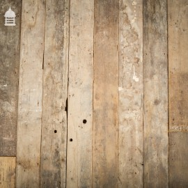 Batch of 16 Square Meters of 19th C 6.5 Inch Wide Pine Floorboard
