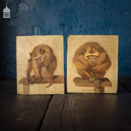 Pair of 19th C Oil on Board Paintings of Monkeys